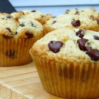 Chocochip Muffin